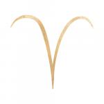 Aries - Sun Sign Temperament