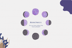 Astrology | Moon Phases